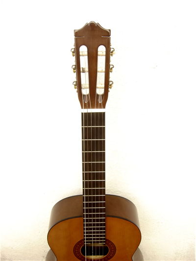 Wood Guitar with Strings